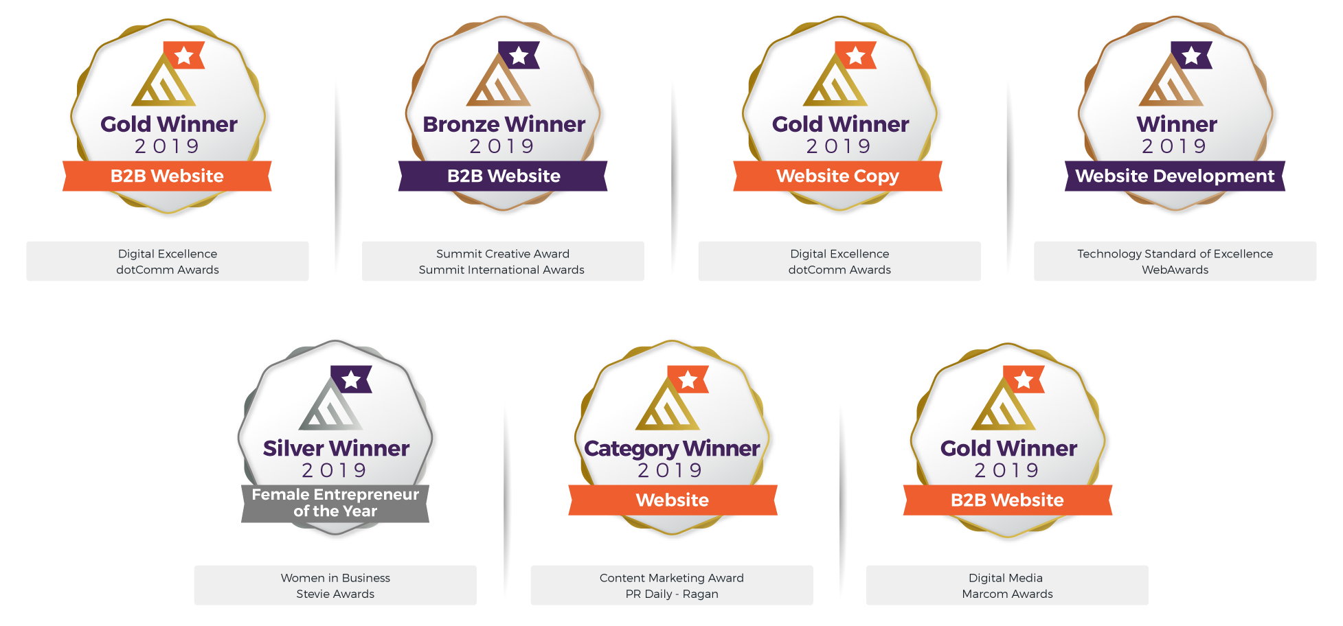 Award Winning Digital Marketing Agency - Dot Comm Awards - Gold Winner 2019