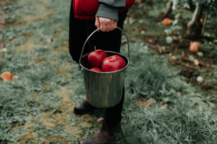 Full Bucket - 5 Leadership Lessons - Maven Collective Marketing